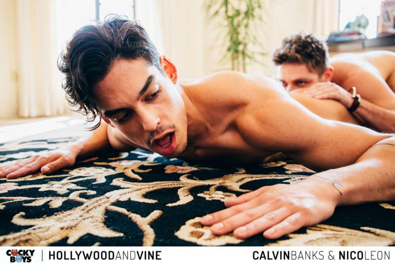 Hollywood  vine - calvin banks  nico leon-1038