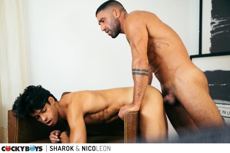 Nico leon-sharok-401