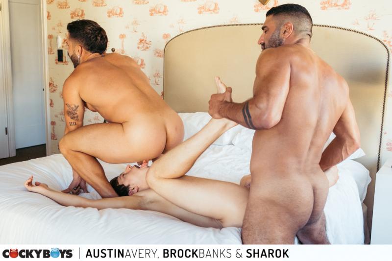Austinbrocksharok-37