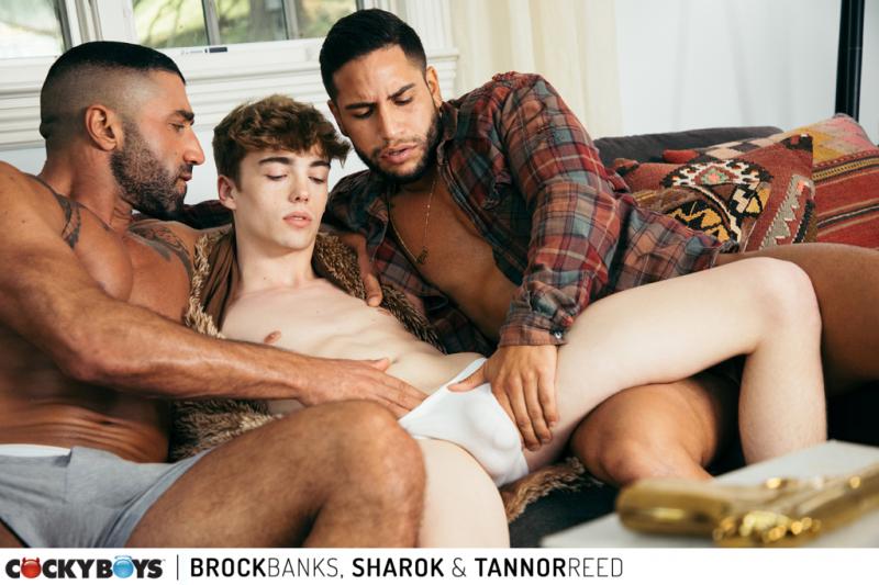 Brock banks  sharok _ tannor reed-24
