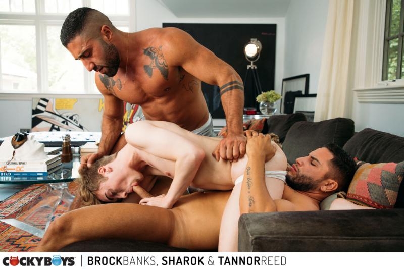 Brock banks  sharok _ tannor reed-6