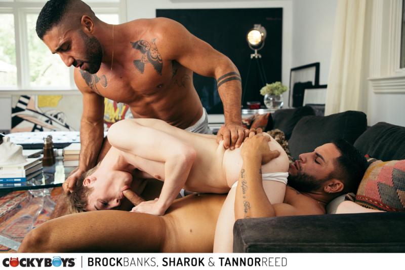 Brock banks  sharok _ tannor reed-29
