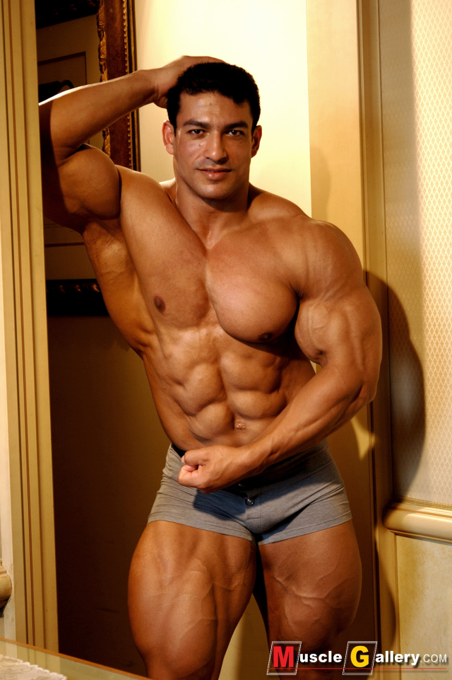 MuscleGallery Tarek Elsetouhi Muscles to be Worshipped