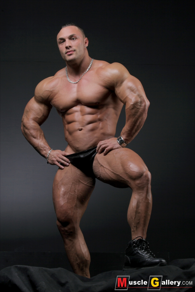 MuscleGallery Ludovic Bogaert Muscle Collage