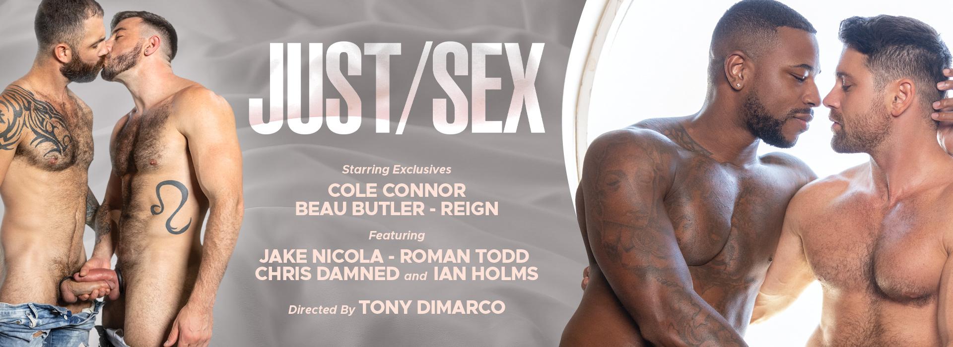 Raging Stallion Studios Just Sex