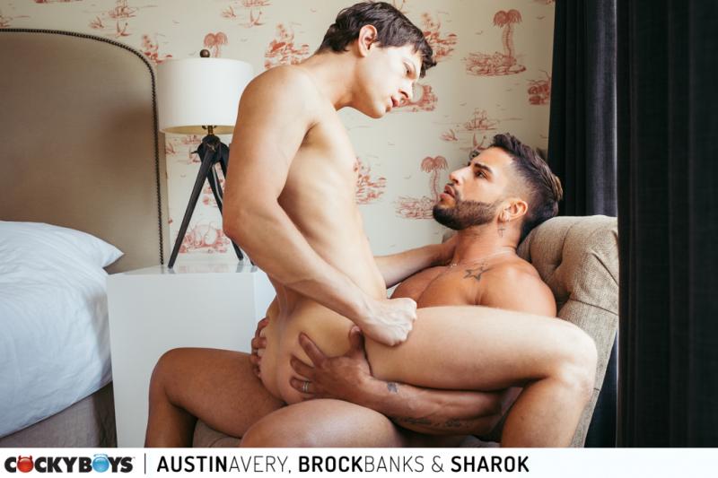 Austinbrocksharok-7