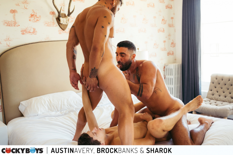 Austinbrocksharok-22