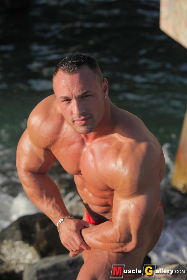 MuscleGallery Ludovic Bogaert Massive French Bodybuilder