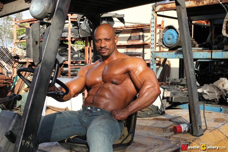MuscleGallery Sami Al Haddad Man at Work