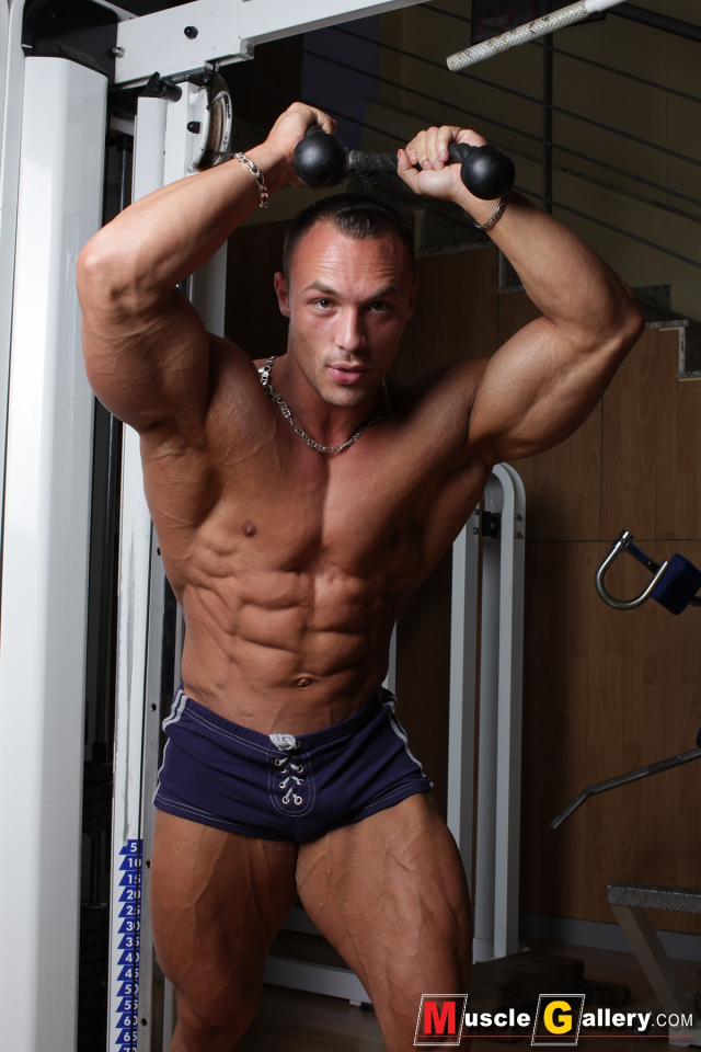 MuscleGallery Ludovic Bogaert French Gym Monster